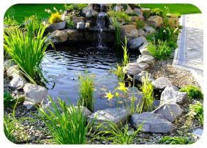 бассейн в окружении гранитных камней